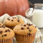 Chocolate Chip Pumpkin Zucchini Muffins