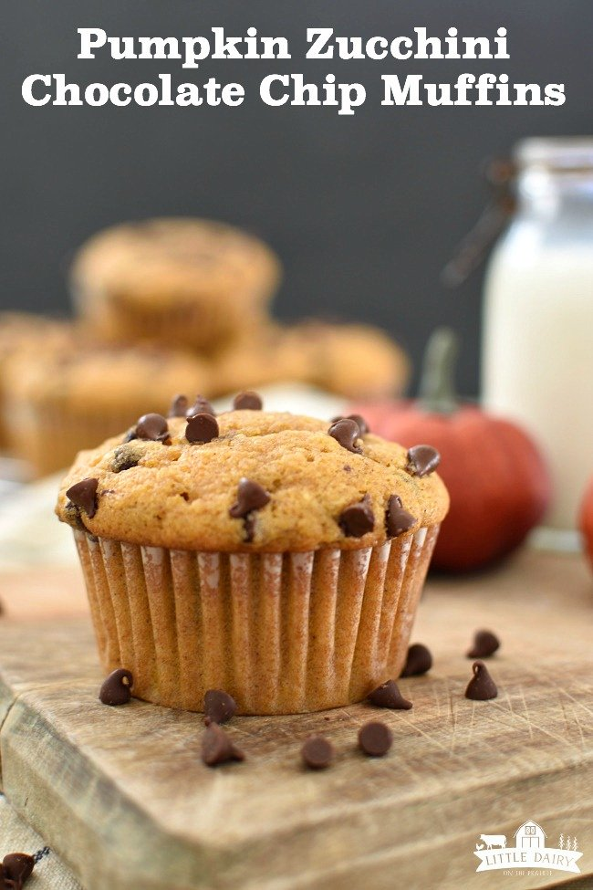 baked pumpkin zucchini muffin with chocolate chips