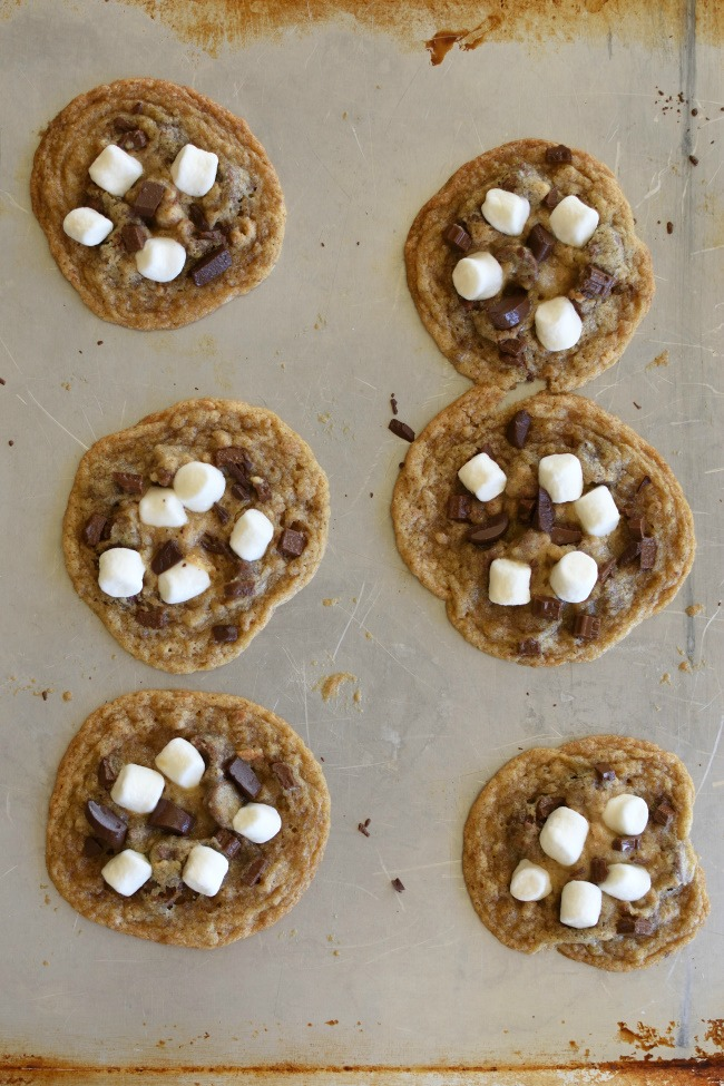 Baked S'mores Cookies on a baking sheet