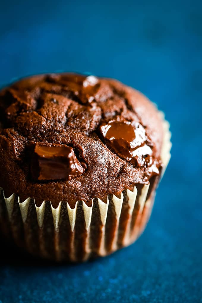 chocolate muffin with melted chocolate chunks