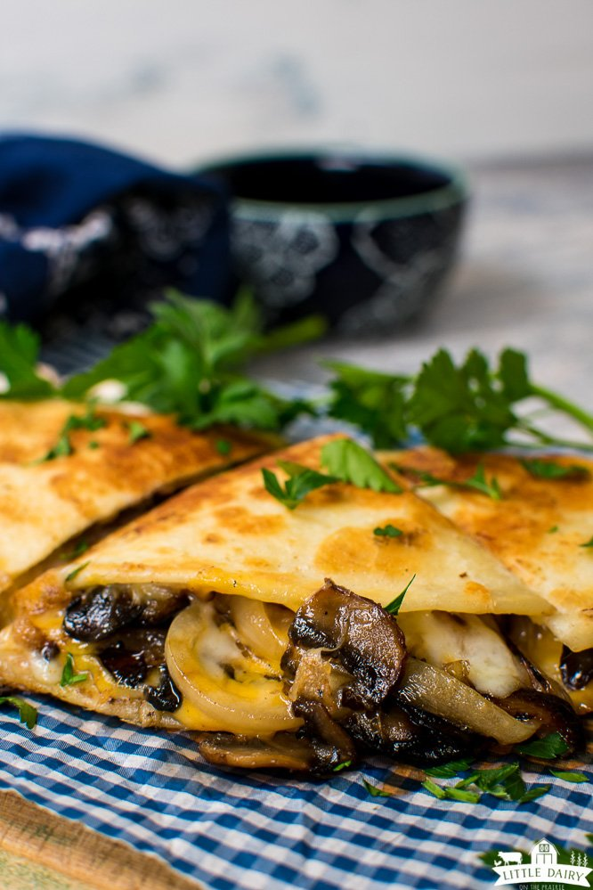 fried quesadilla with melted cheddar cheese and cooked mushrooms and onions