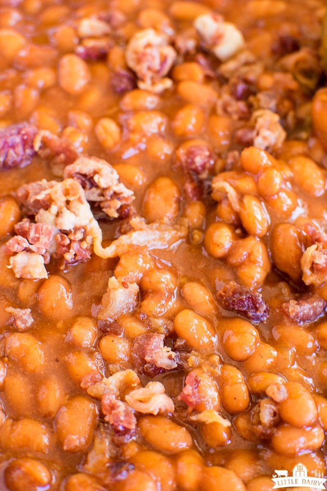 baked beans in thick sauce with fried bacon crumbles