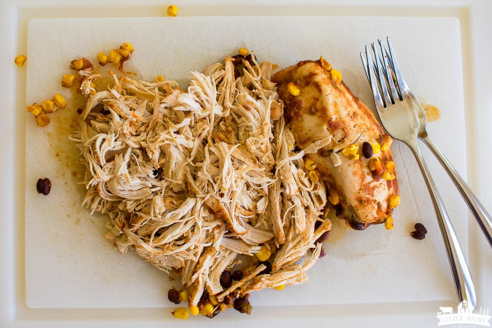 shredded chicken and a chicken breast