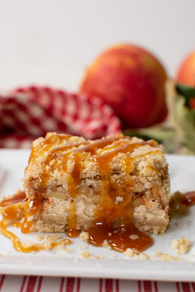 a cheesecake bar drizzled with caramel sauce