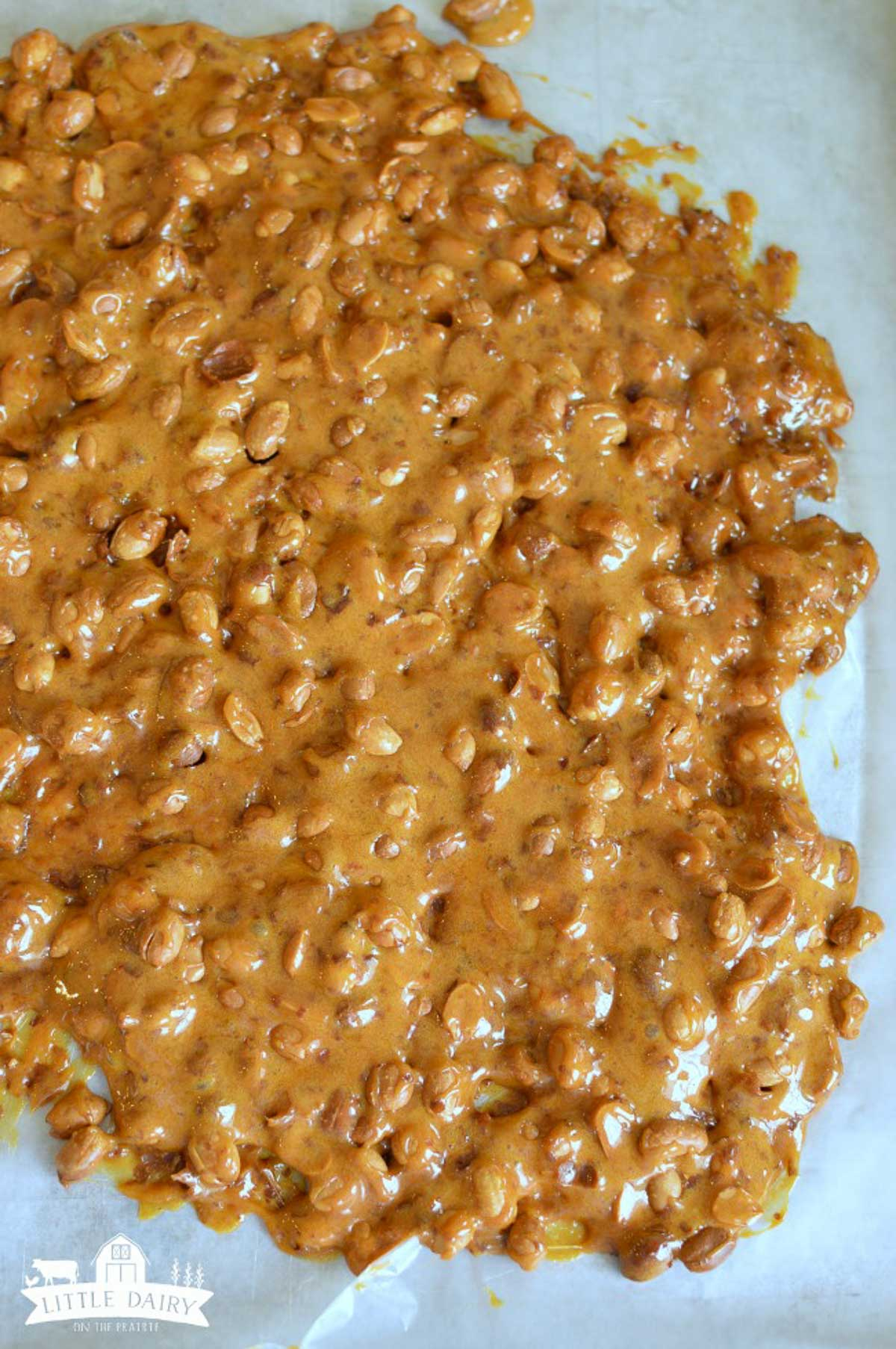 Peanut Brittle on a baking sheet.