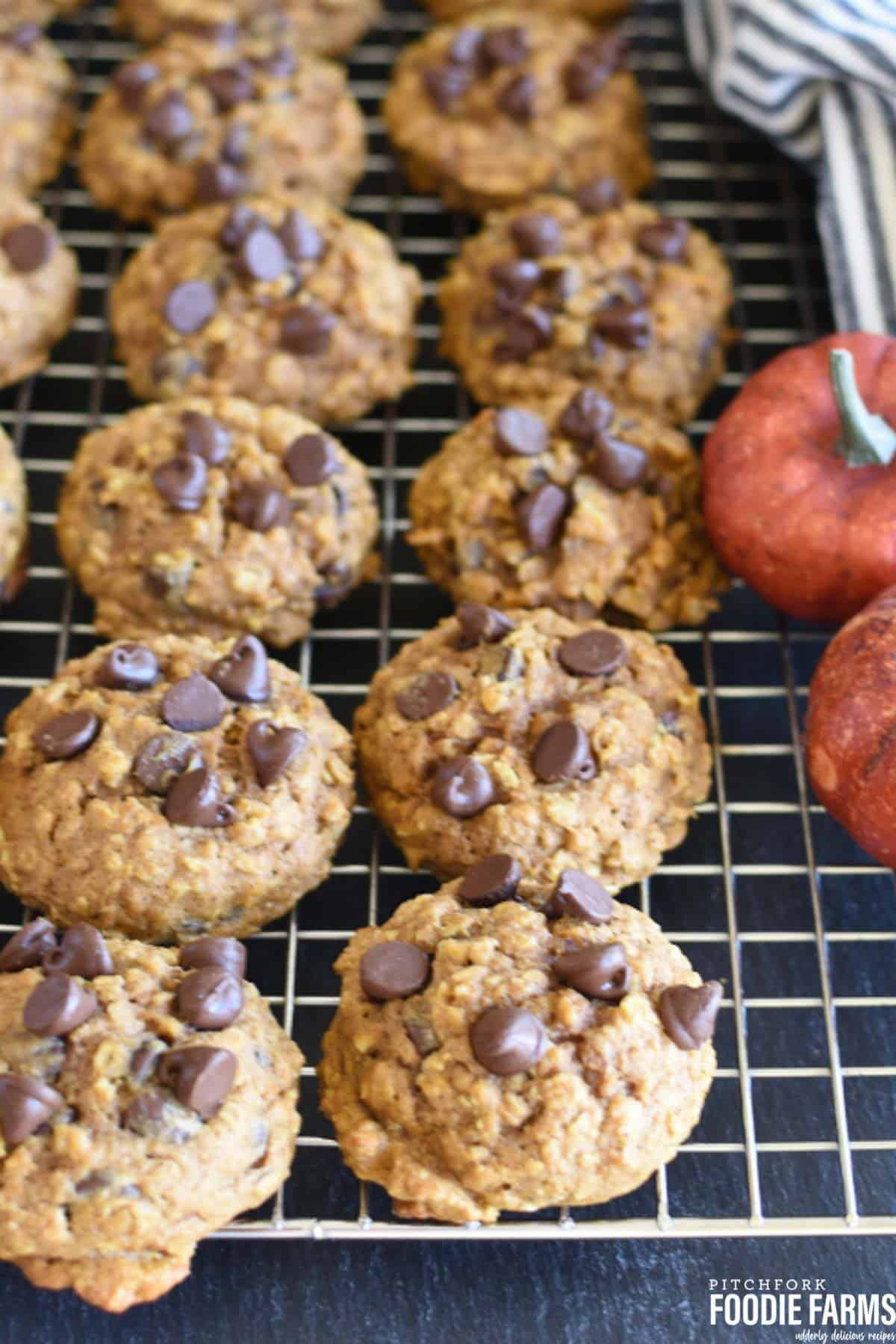 Baked Pumpkin oatmeal chocolate chip cookies on a wire cooling rack.